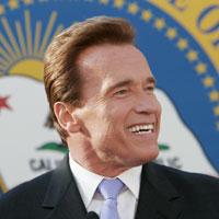 Governor Arnold Schwarzenegger, Chairman